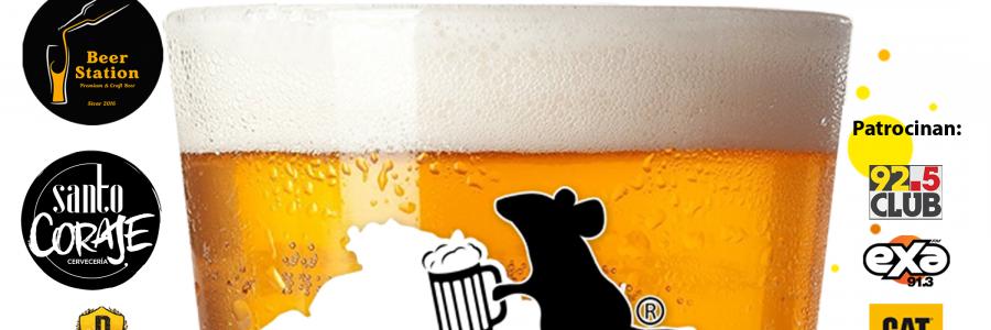 Post-beer fest 1